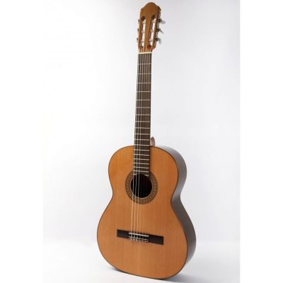 Raimundo 118 Classical Nylon Guitar
