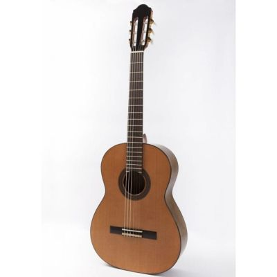 Raimundo 120E Classical Nylon Guitar