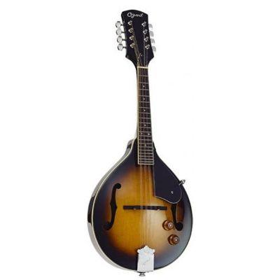 Ozark 2077 Electro Mandolin With Gigbag