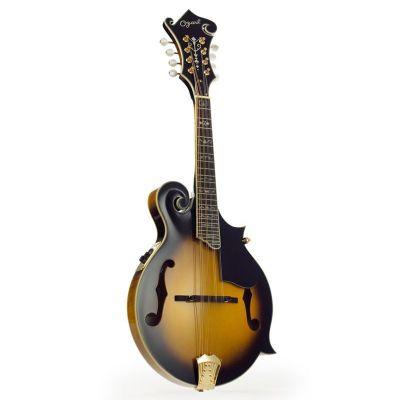 Ozark 3175 Jazz Guitar Flamed Maple, Gold Hardware