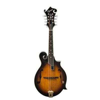 Ozark 2255S Mandolin F Model Deluxe, inc Gigbag