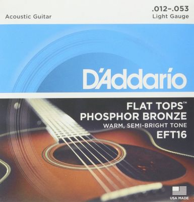 D'Addario Flat Tops Phosphor Bronze Acoustic Guitar Strings, Light, 12-53