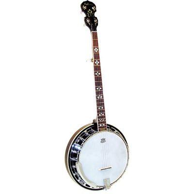 Ashbury AB-45 5 String Resonator Banjo, Brass Tone Ring