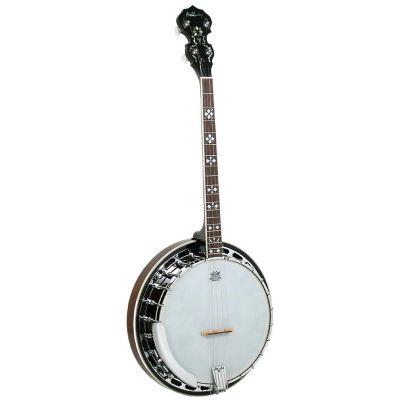 Ashbury AB-45T Tenor Banjo,Brass Tone Ring