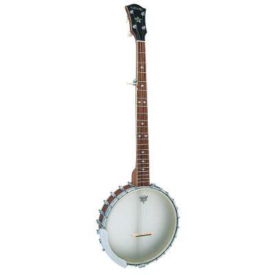 Ashbury AB-55 5 String Openback Banjo, Walnut