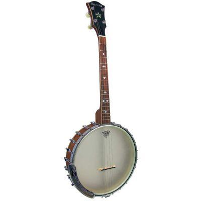 Ashbury AB-55TS Openback Tenor Banjo, 17 Frets