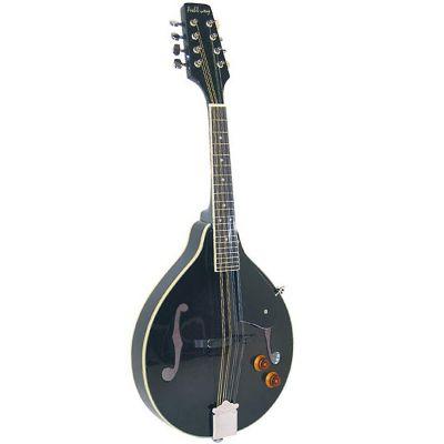 Ashbury AM-10E A Style Mandolin, Black