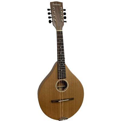 Ashbury AM-140 A Style Mandolin, Solid Cedar