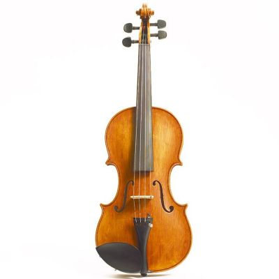 Stentor Amati Violin, Full Size (1995A)