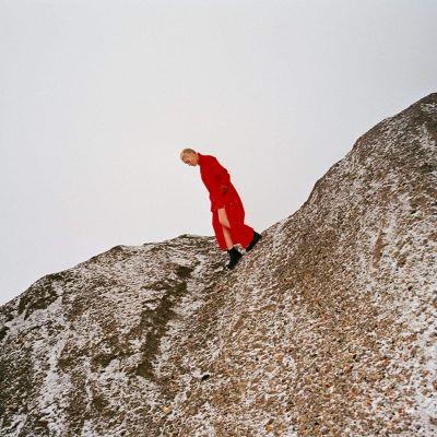 CATE LE BON - REWARD - INDIE EXCLUSIVE - RED VINYL