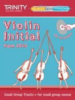 Small Group Tracks - Violin Initial