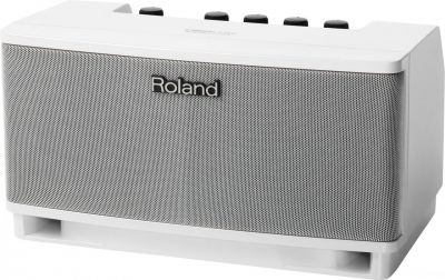 Roland CUBELMWH Monitor Amplifier - DISPLAY MODEL