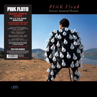 PINK FLOYD - DELICATE SOUND OF THUNDER - VINYL