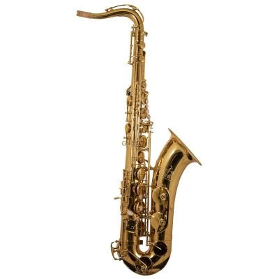 Trevor James 3830G The Horn Tenor Sax Outfit, Gold Lacquer