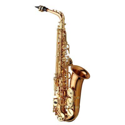 Yanagisawa Alto Saxophone, Bronze, Gold Lacquer (AWO2)
