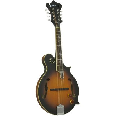 Ashbury AM380E Electro F-Style Mandolin