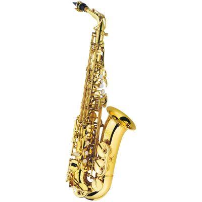 J Michael Alto Saxophone Outfit