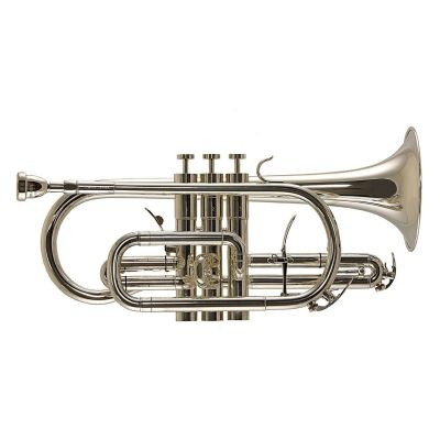 Trevor James Renaissance TJCT6500SP Bb Cornet, Silver-plated