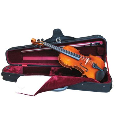 Westbury Violin Full Size, with Gold Set up