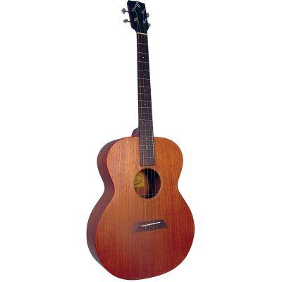 Ashbury AT-24 Tenor Guitar, Solid Sapele