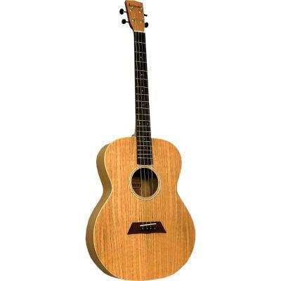 Ashbury AT-40 Tenor Guitar, Flamed Oak