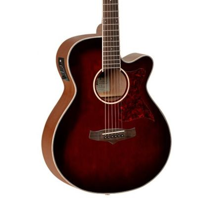 Tanglewood TW4-WB Winterleaf Super Folk, Whiskey Barrel