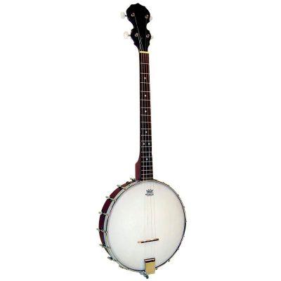 Blue Moon BJ-10T Openback Tenor Banjo