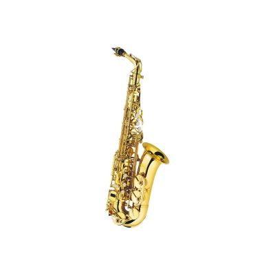 Pre Owned J Michael Alto Saxophone Outfit