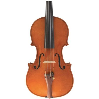 Wessex Violin VI116-4/4 (XV Series) Reddish Brown Set Up