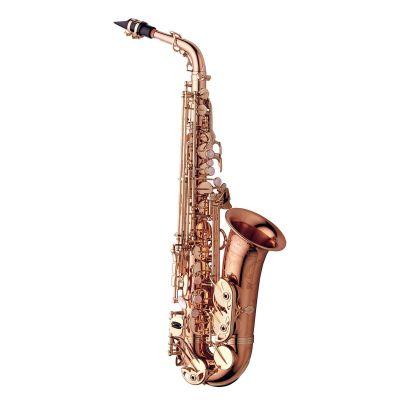 Yanagisawa Alto Saxophone, Bronze, Pink Gold Body (AWO20PG)
