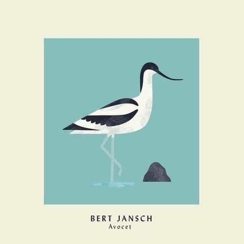 BERT JANSCH - AVOCET - VINYL