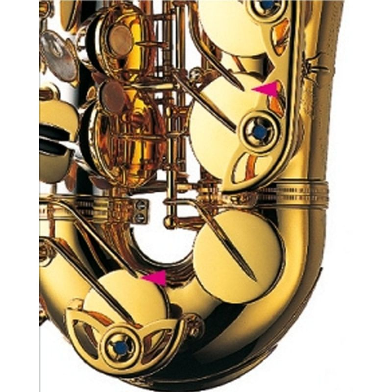 Yanagisawa Tenor Saxophone, Solid silver neck and bell, bronze body (TWO32)