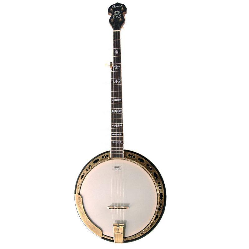 Ozark 2115G 5 String Banjo, Bronze Engraved With Gigbag