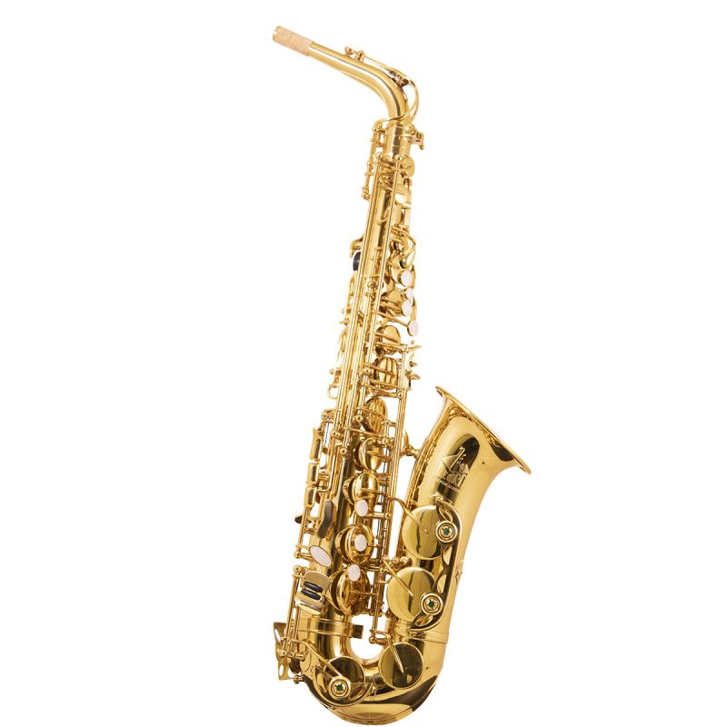 Trevor James 3730G The Horn Alto Sax Outfit, Gold Lacquer