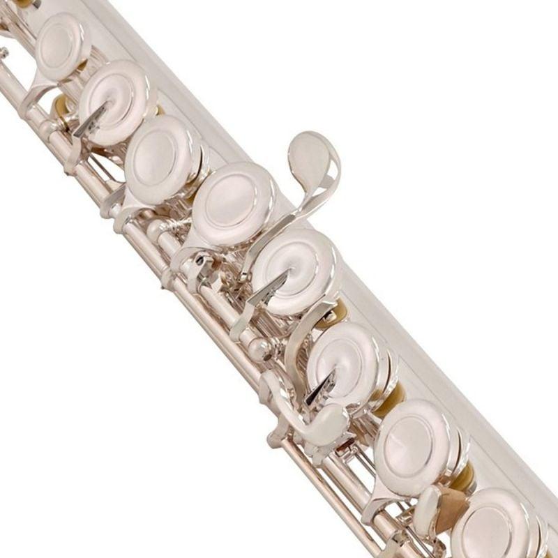 Trevor James Virtuoso Flute, Traditional Lip Plate, Closed Hole