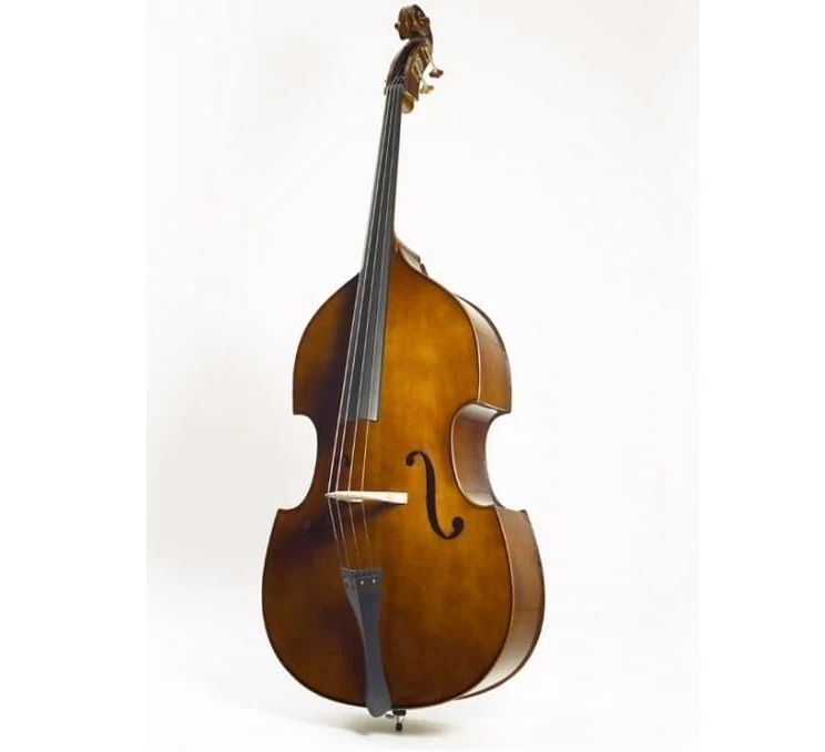 Stentor 1950C Double Bass, Flat Back, Solid Top 3/4 Size
